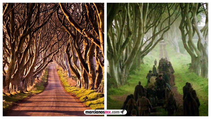 escenarios game of thrones realidad Dark Hedges Winterfell