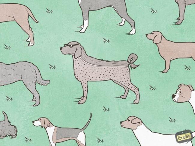 ilustraciones inteligentes gudim (11)