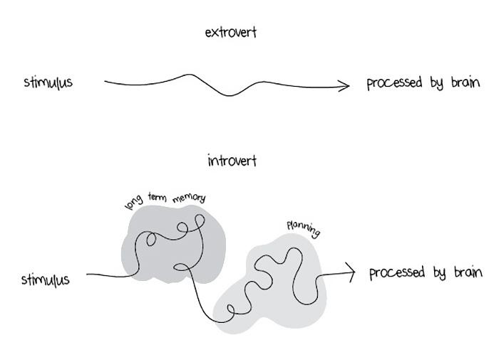 introvertidos-vs-extrovertidos (3)