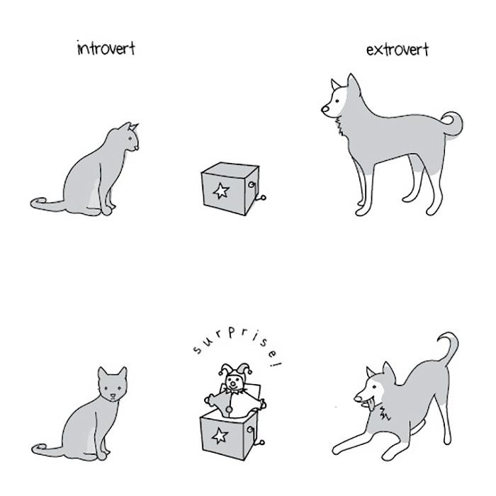 introvertidos-vs-extrovertidos (6)