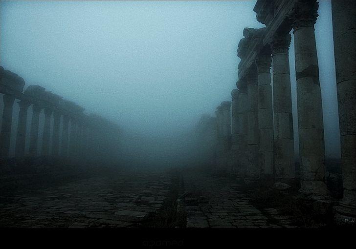 muerte y soledad neblina