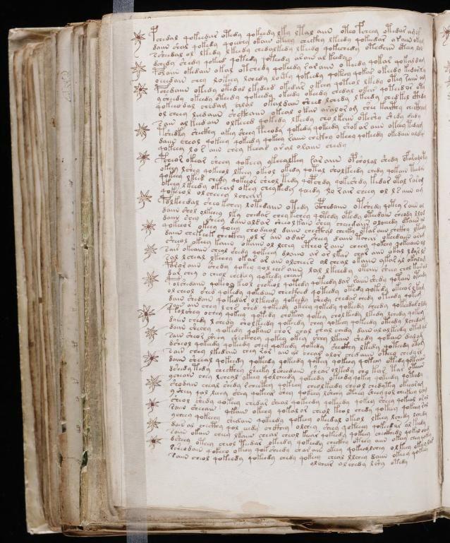 paginas del Manuscrito Voynich (12)