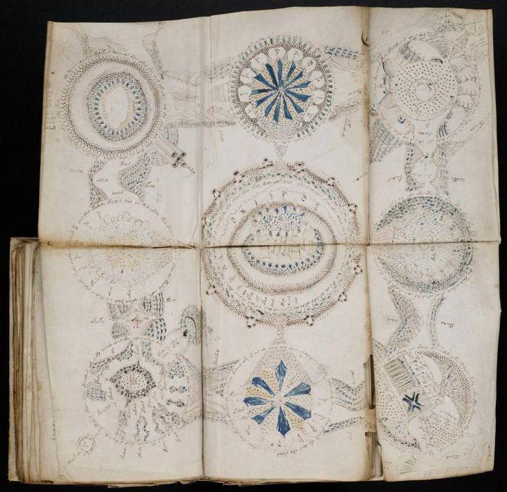 paginas del Manuscrito Voynich (13)