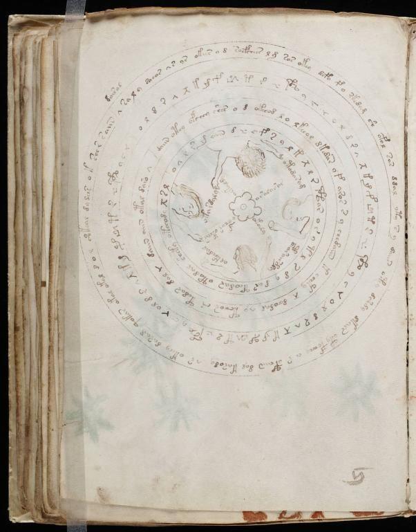 paginas del Manuscrito Voynich (2)