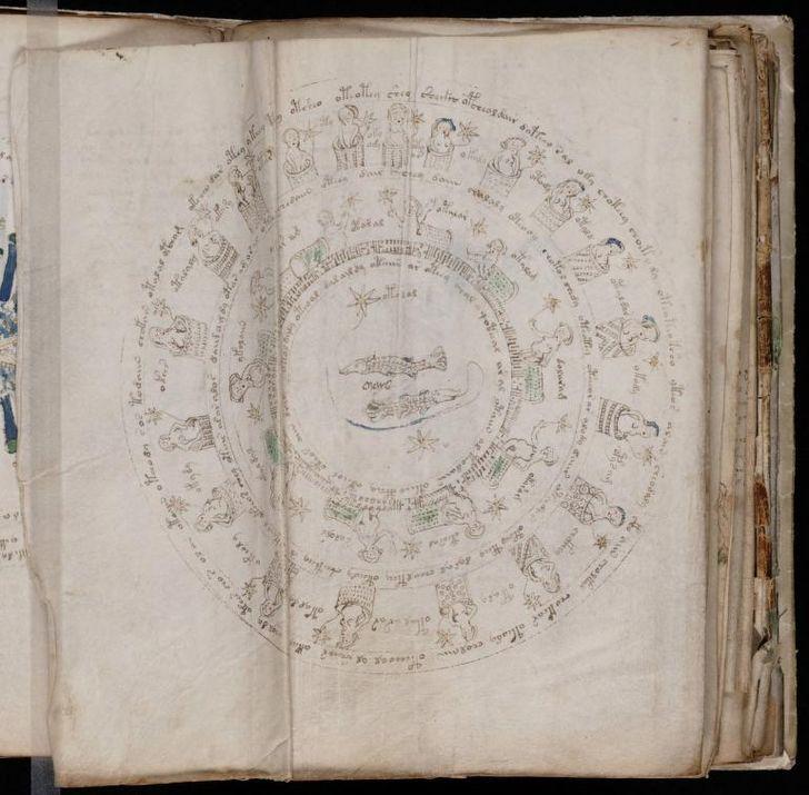 paginas del Manuscrito Voynich (5)