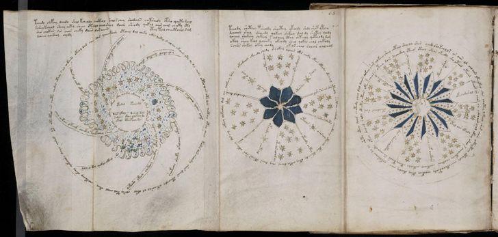 paginas del Manuscrito Voynich (6)