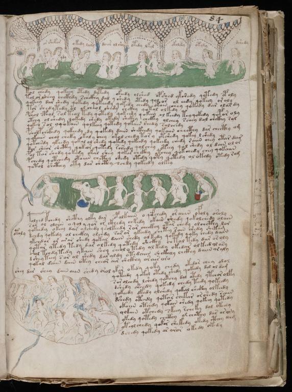 paginas del Manuscrito Voynich (8)