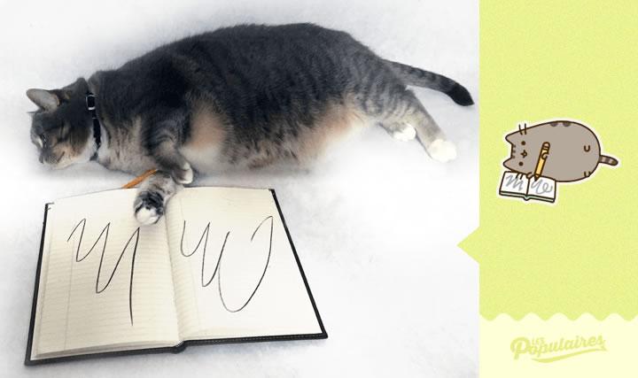 pusheen gato vida real escritura(4)