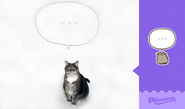pusheen gato vida real pensando (3)