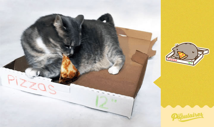 pusheen gato vida real pizza(12)