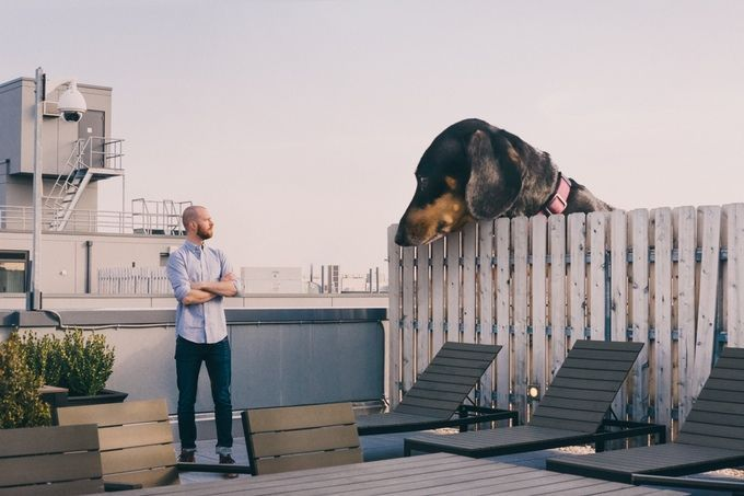 vivian perra gigante (1)