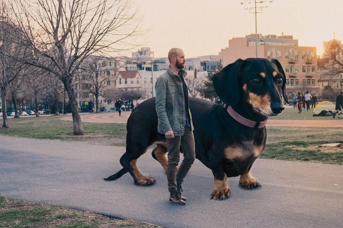 vivian perra gigante (4)