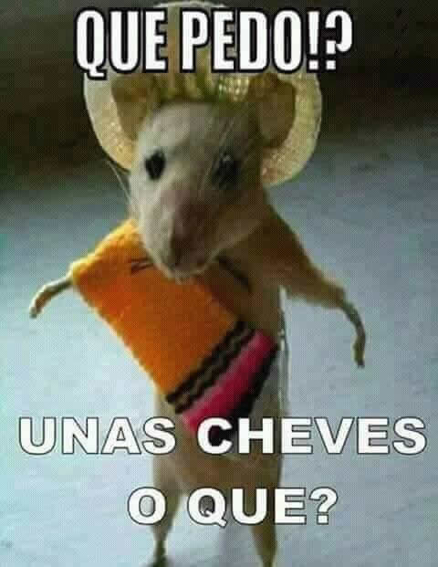 Marcianadas_238_0107160900 (146)
