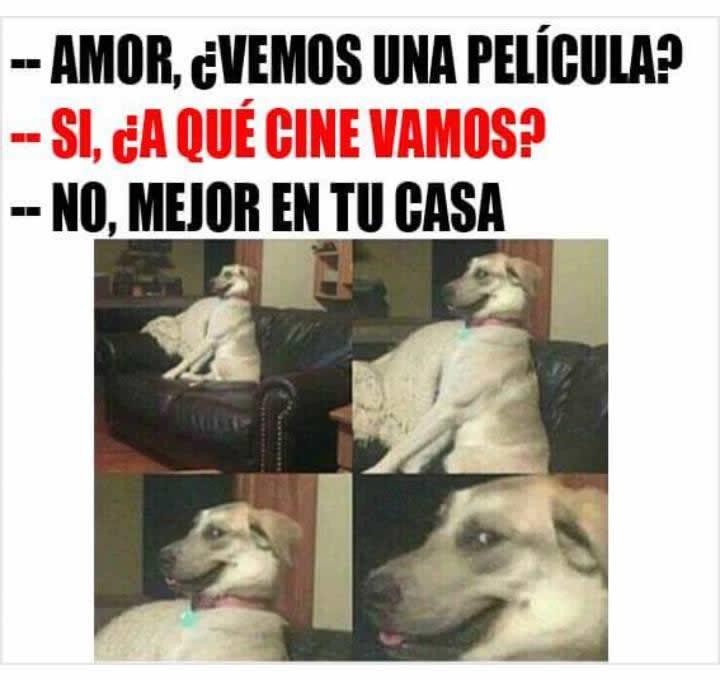 Marcianadas_238_0107160900 (157)