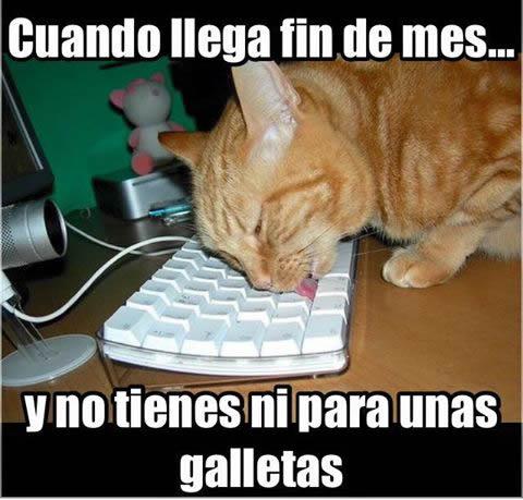 Marcianadas_238_0107160900 (23)