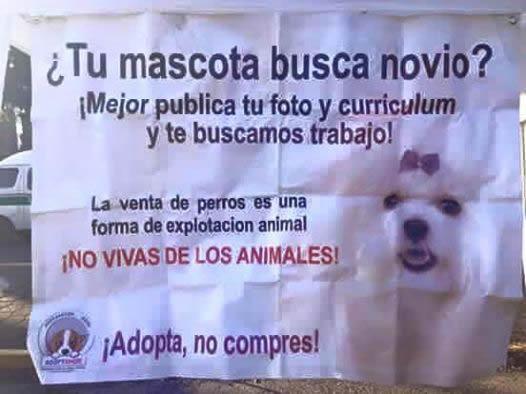 Marcianadas_239_0807161253 (176)