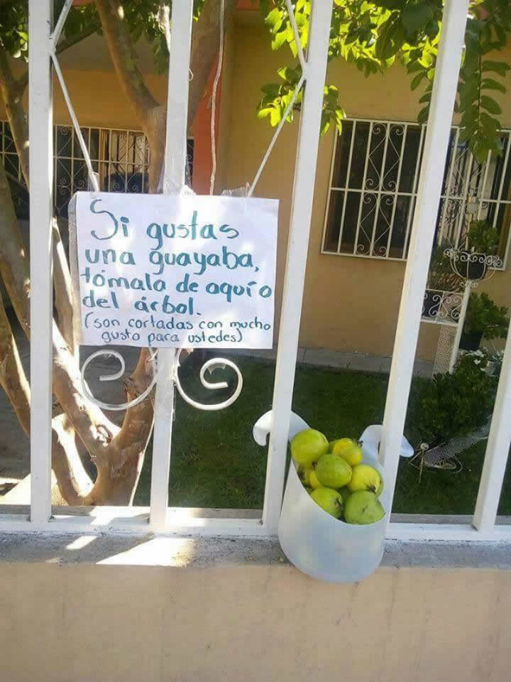 Marcianadas_239_0807161253 (23)