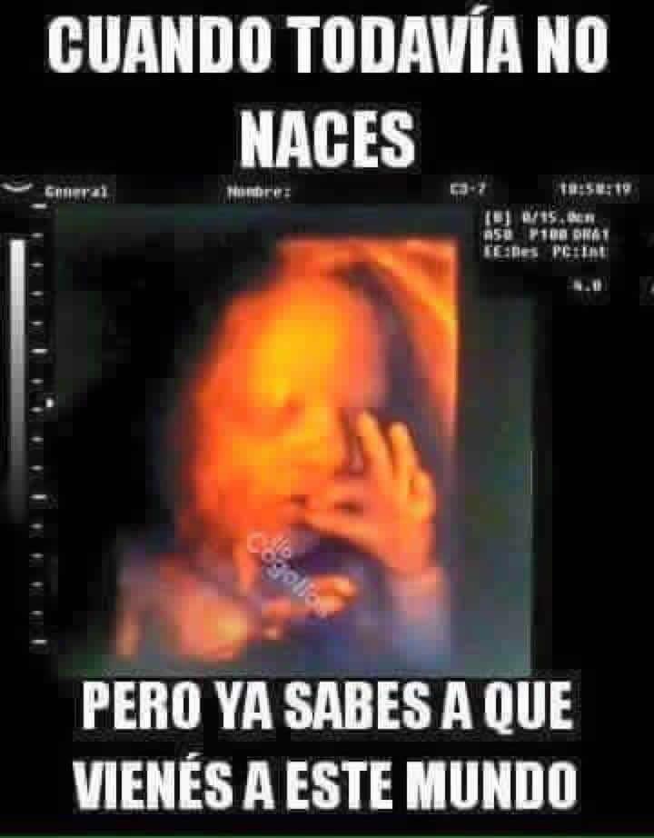 Marcianadas_239_0807161253 (292)