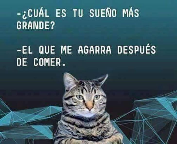 Marcianadas_239_0807161253 (77)