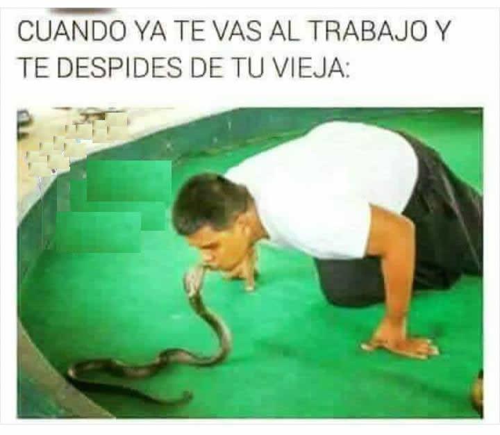 Marcianadas_240_1507161312 (116)