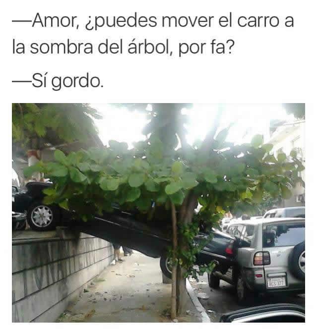 Marcianadas_240_1507161312 (210)