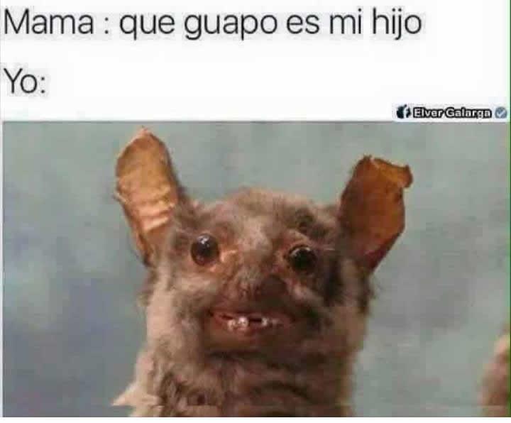 Marcianadas_240_1507161312 (233)