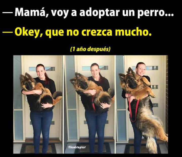 Marcianadas_240_1507161312 (244)