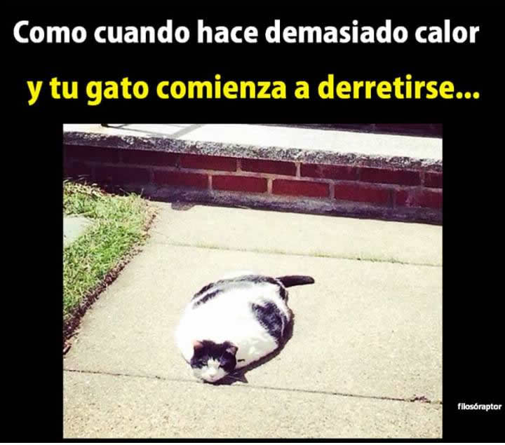 Marcianadas_240_1507161312 (263)