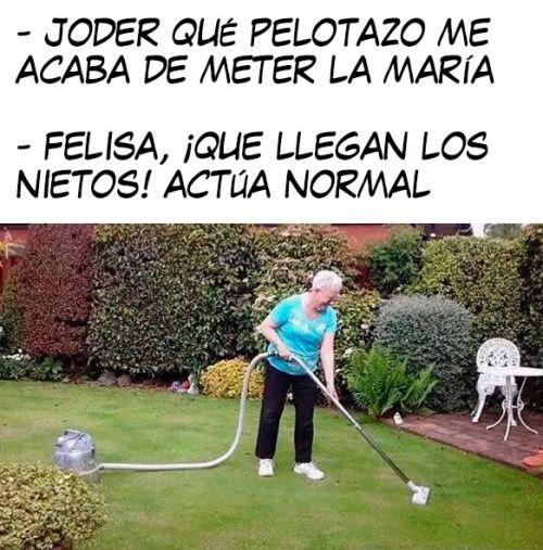 Marcianadas_240_1507161312 (277)