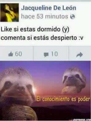Marcianadas_241_2207160103 (224)