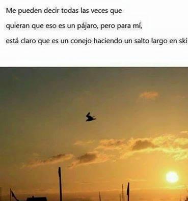 Marcianadas_242_0907161202 (79)