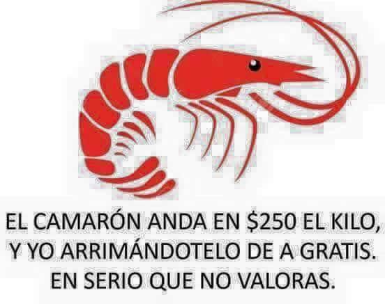 Marcianadas_242_2907160000 (107)