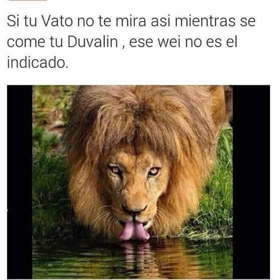 Marcianadas_242_2907160000 (129)