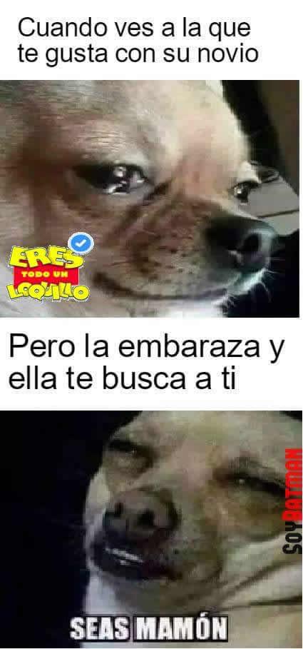 Marcianadas_242_2907160000 (148)