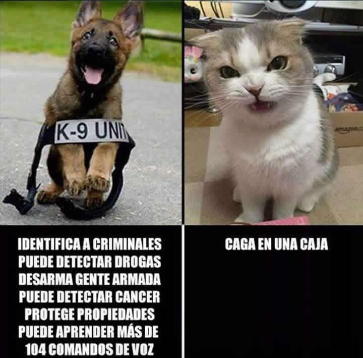 Marcianadas_242_2907160000 (170)