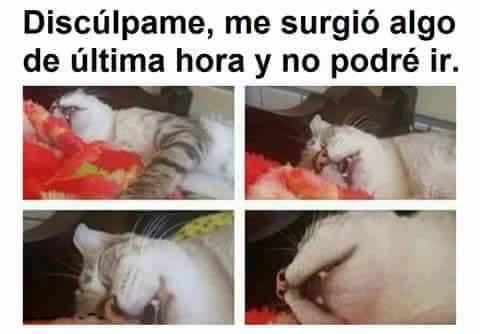 Marcianadas_242_2907160000 (237)