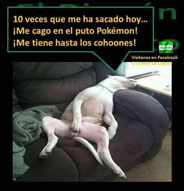 Marcianadas_242_2907160000 (248)