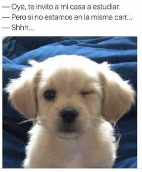 Marcianadas_242_2907160000 (58)