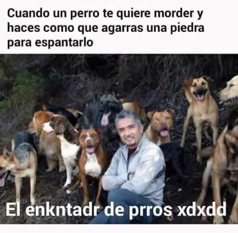 Marcianadas_242_2907160000 (59)