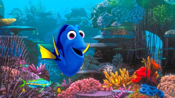 buscando a dory pez blue tang