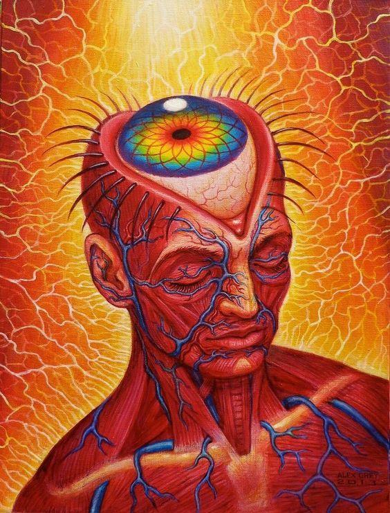 el ojo del cerebro