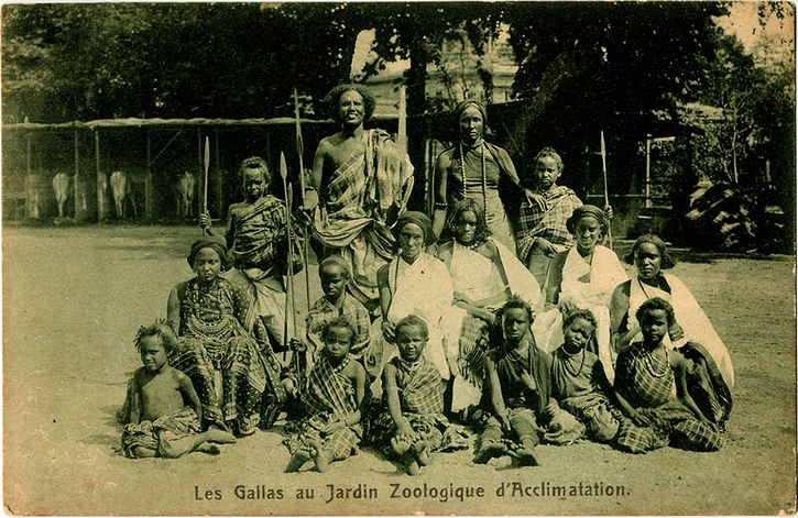 Les-gallas