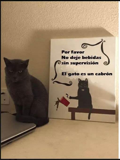 Marcianadas_243_0508160000 (201)