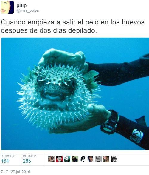 Marcianadas_243_0508160000 (251)