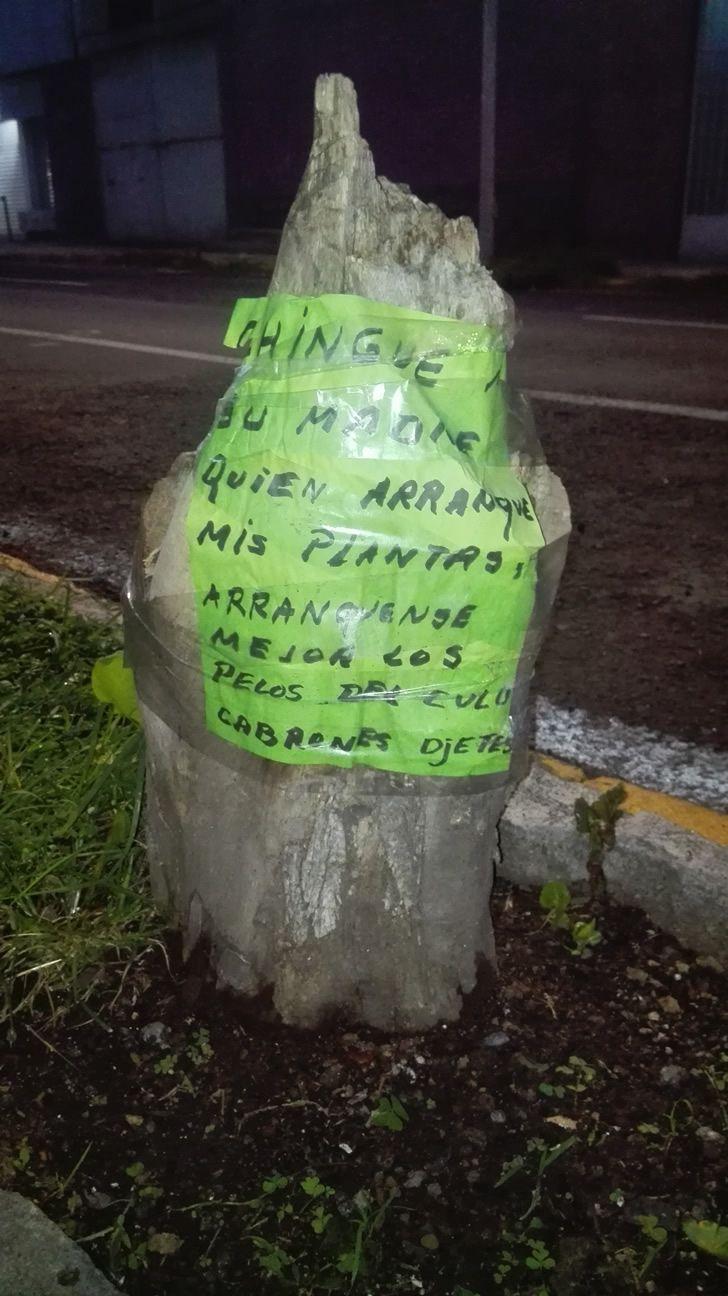 Marcianadas_243_0508160000 (284)