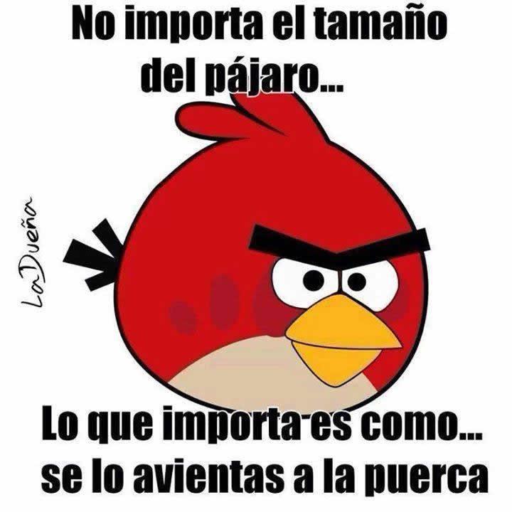 Marcianadas_243_0508160000 (40)
