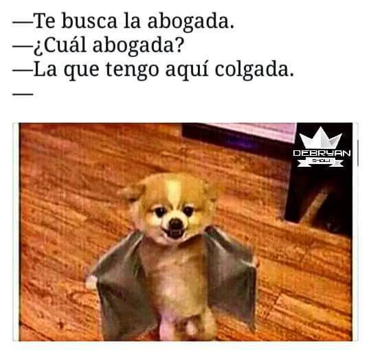 Marcianadas_243_0508160927 (11)
