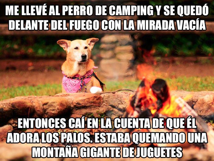 Marcianadas_244_1508161138 (191)