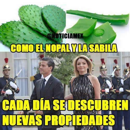 Marcianadas_244_1508161138 (253)