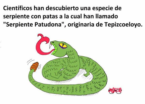 Marcianadas_244_1508161138 (307)